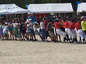 大阪市西区「体育と防災の日」2018で子どもたちが綱引きをしている様子